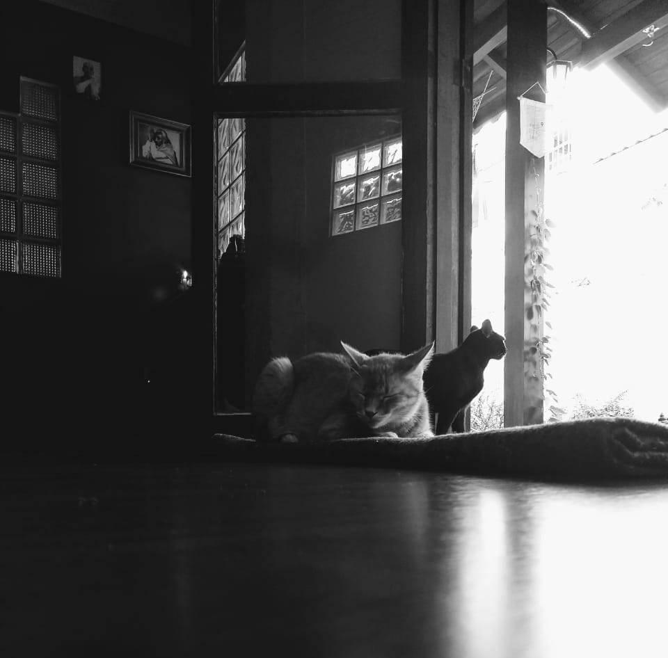 PHOTO-2019-04-17-15-36-01